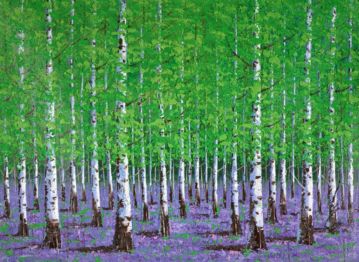 The Birch Forest IV